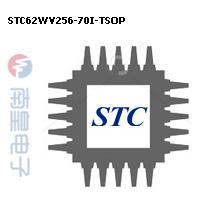 STC62WV256-70I-TSOP封装图片